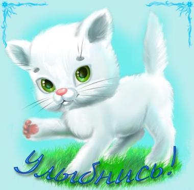 Открытка. С днем улыбки! Улыбнись! Белый котенок открытки фото рисунки картинки поздравления