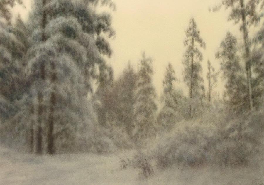 0- Евгений Дубицкий - Январский снег акварель.jpg