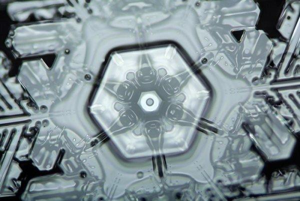8. Ядро снежинки, похожее на цветок