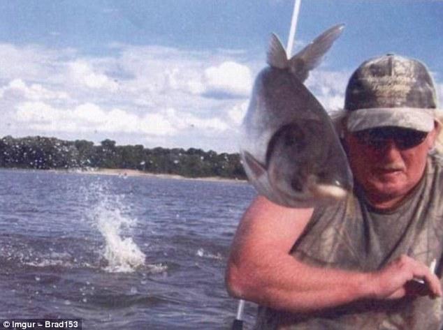 Неожиданная встреча во время рыбалки.