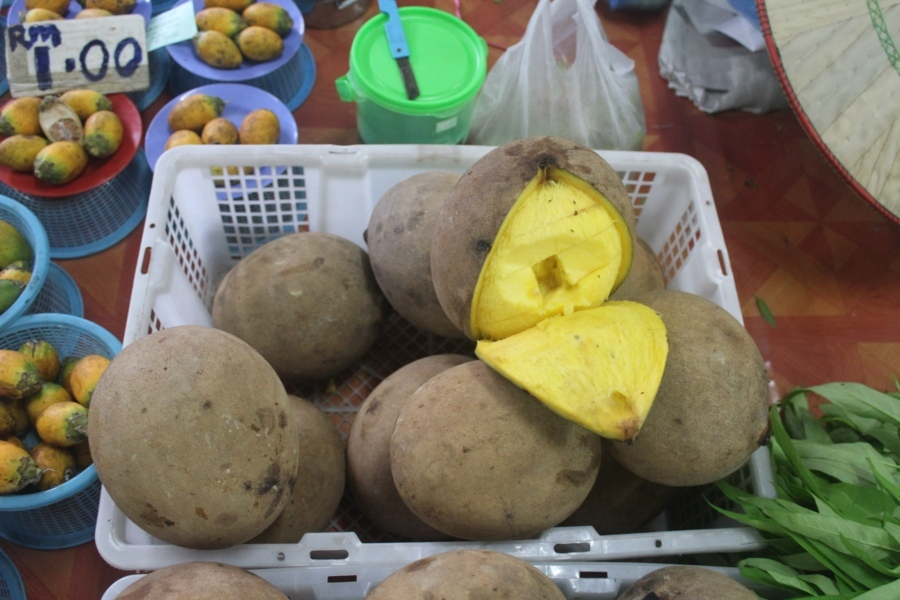 По сути это манго, только дикое. Вообще в дикой природе фрукты в основном кислые, видимо, так насеко