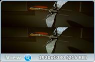 Крылатые монстры с Дэвидом Аттенборо 3D / Flying Monsters with David Attenborough 3D (2011) BDRip 1080p