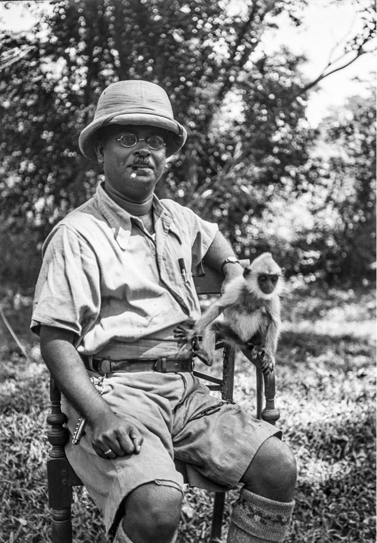 351. Мадугалла. Портрет местного важного чиновника в тропическом костюме на стуле. Слева сидит обезьяна