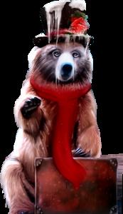 медведь зимой