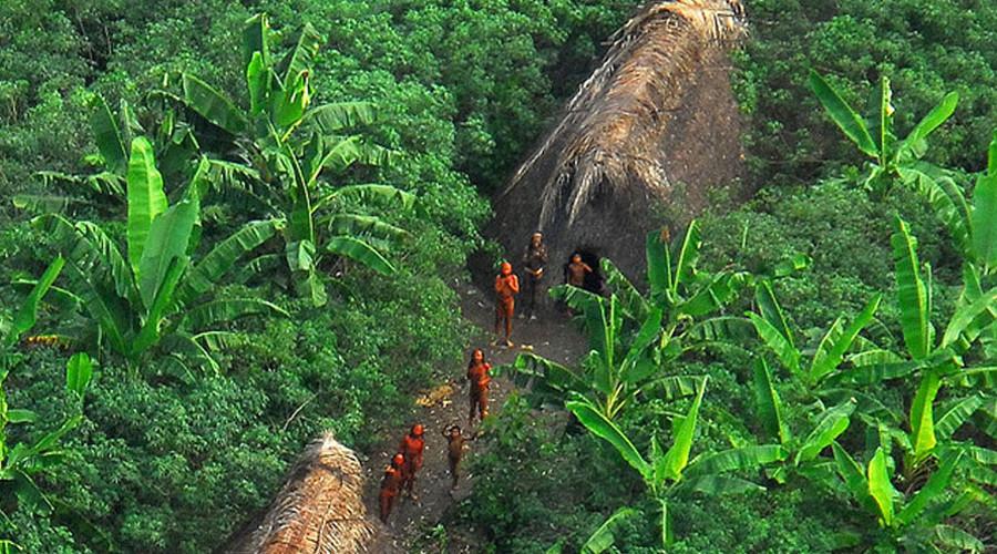 2. Долина Джавари, Бразилия На этой территории проживает около 14 племен, понятия не имеющих о цивил