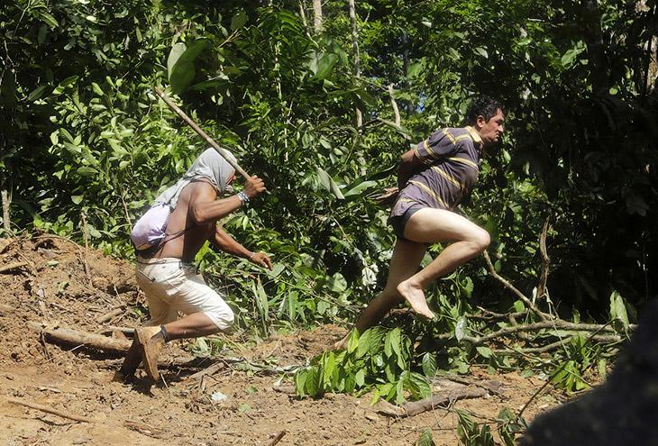 Как воины джунглей Амазонки борются с черными лесорубами (21 фото)