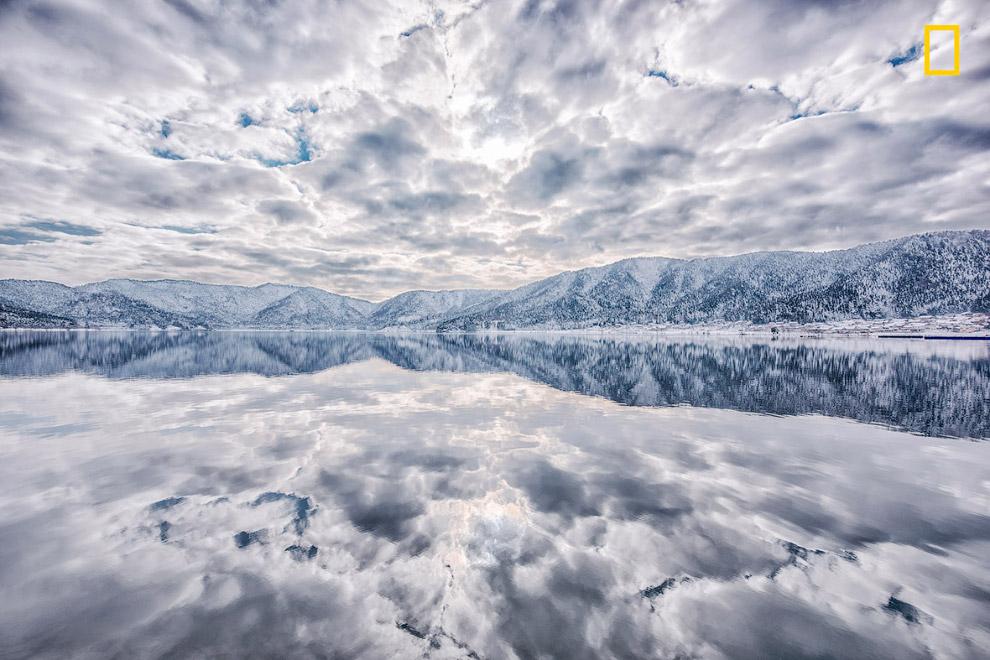8. Вишневый сад на берегу. (Фото Hiroshi Tanita   National Geographic Travel Photographer of th