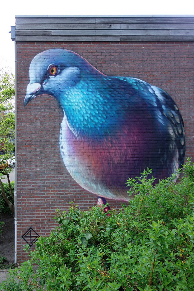 Pigeon Murals: Street Art by Super A
