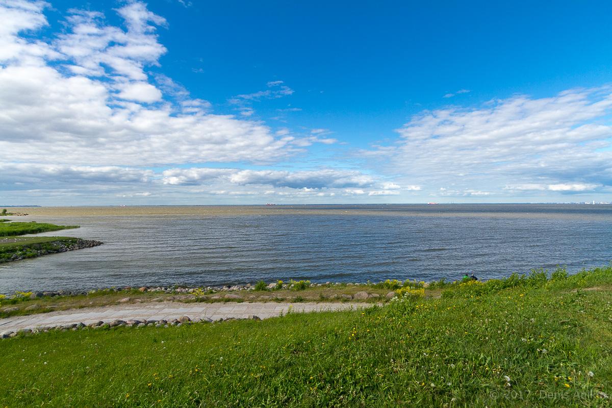 побережье финского залива фото 8