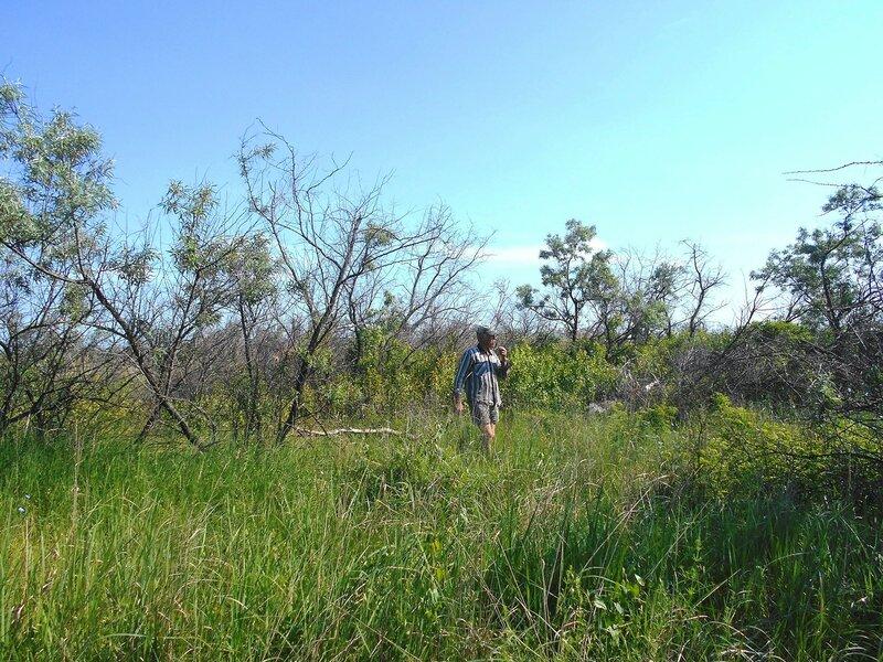 В походе, средь зелёной, средь травы ... DSCN5640.JPG