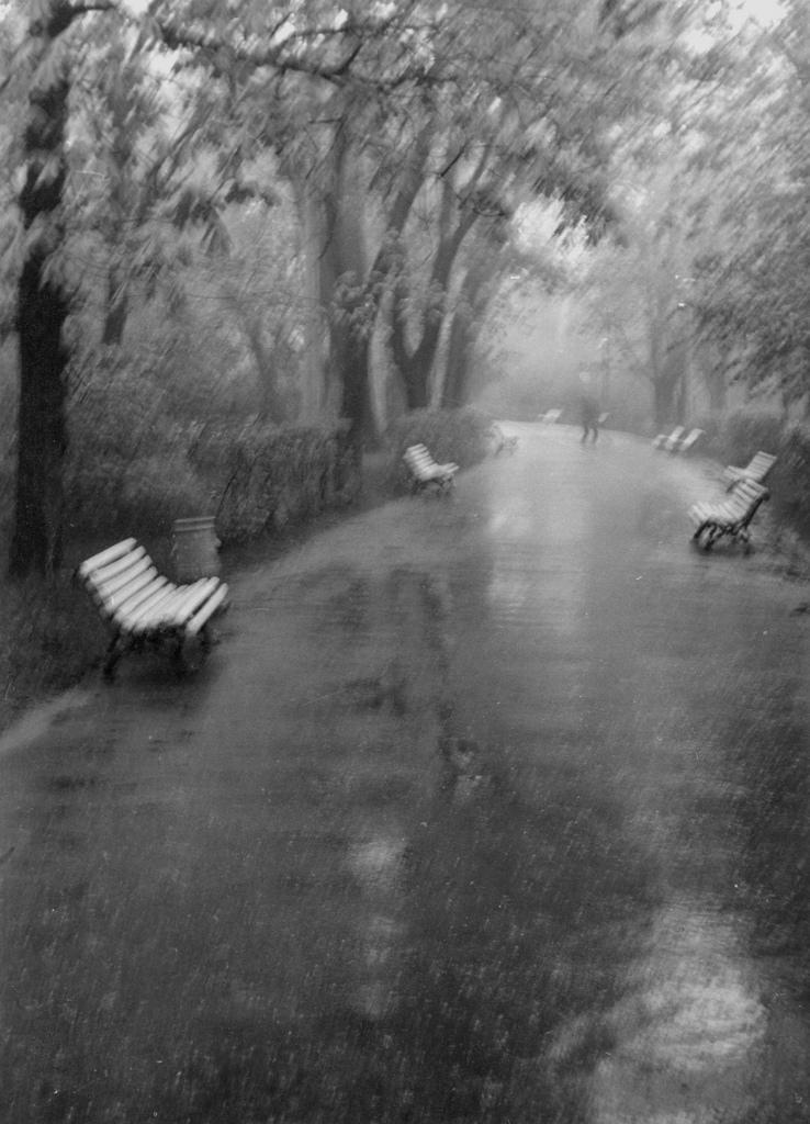 1971. Дождь в парке Шевченко