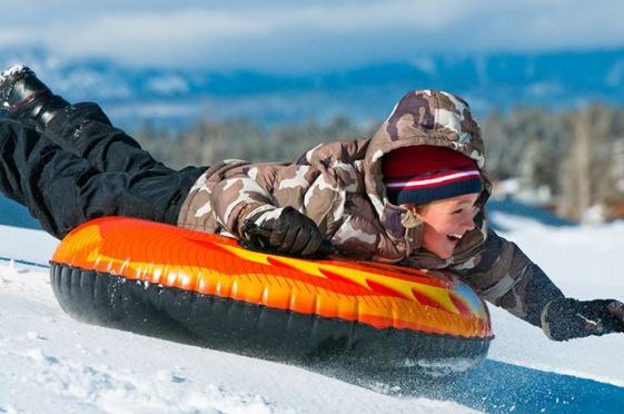 ВВолгограде вДень снега устроят гонки насобаках илыжный забег