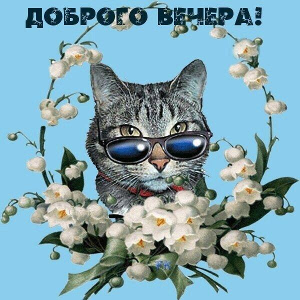 Прикольная открытка пожелание доброго вечера, открытка новый год