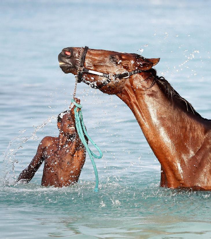 1. У кого-то сугробы 1 декабря, а у кого-то плавание. (Фото Chris Jackson):