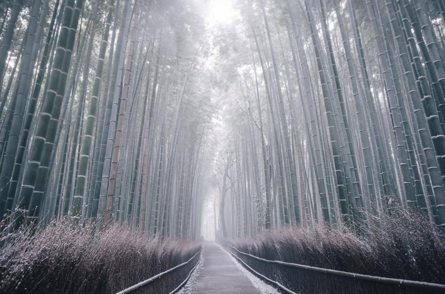 15. Киото, Япония.