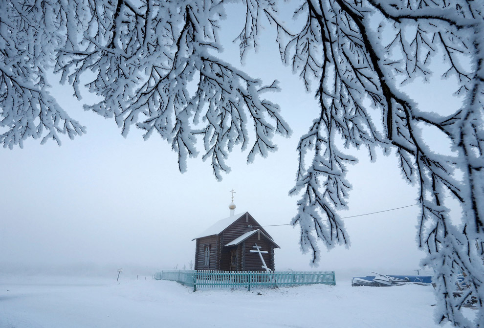 12. Олени в этих краях незаменимы для передвижения по тундре. (Фото Sergei Karpukhin | Reuters)