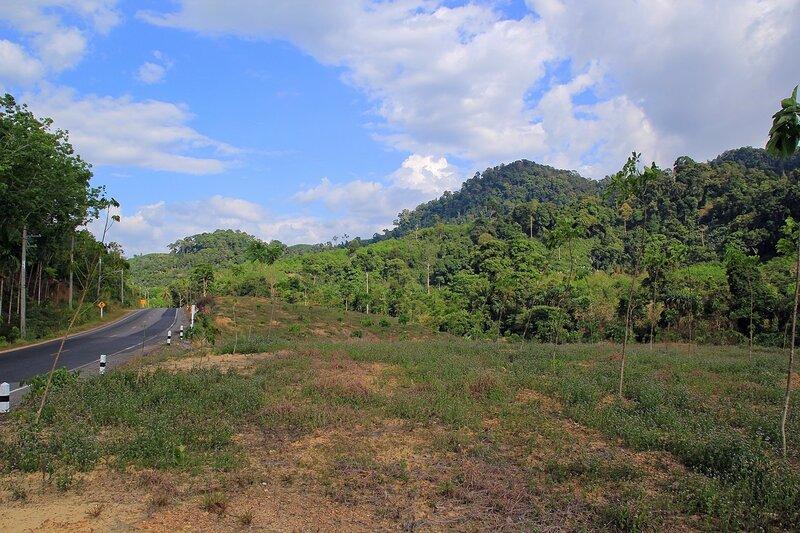 Горы, лес, облака и дорога из Као Лака в Такуа Па, Таиланд