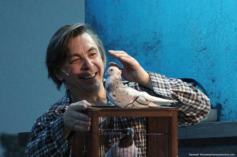 Мосоперетта. Любовь и голуби. 07.05.17.59..jpg