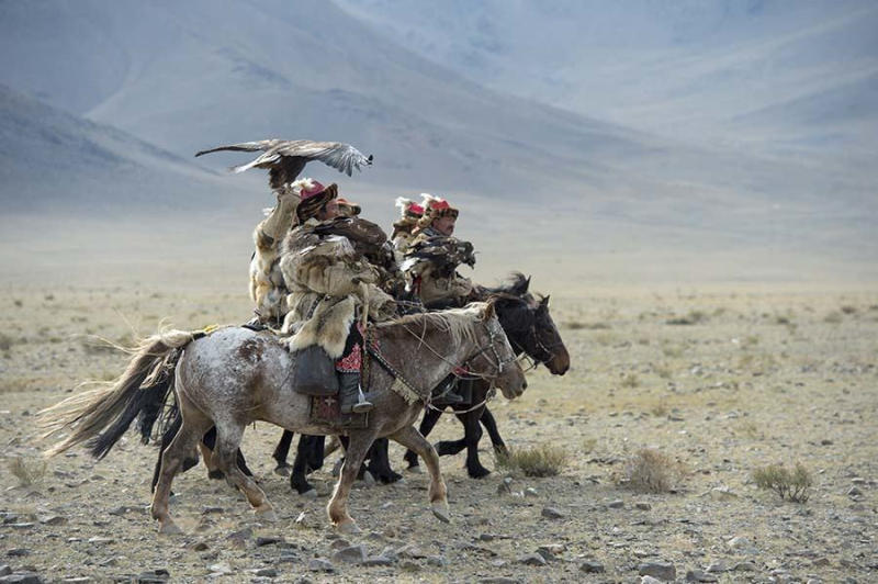 A group of Kazakh Eagle hunters and their golden eagles arriving at the festival grounds.