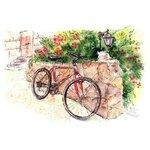 Велосипеды и мопеды