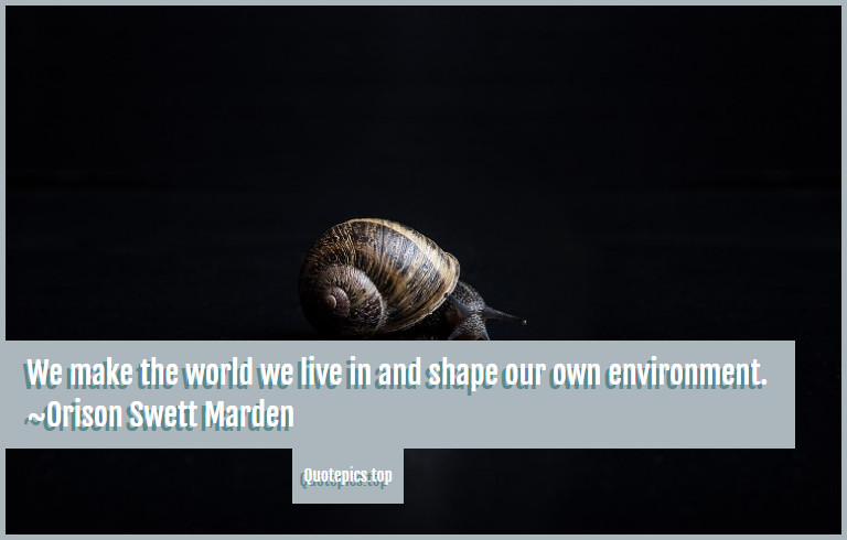 We make the world we live in and shape our own environment. ~Orison Swett Marden