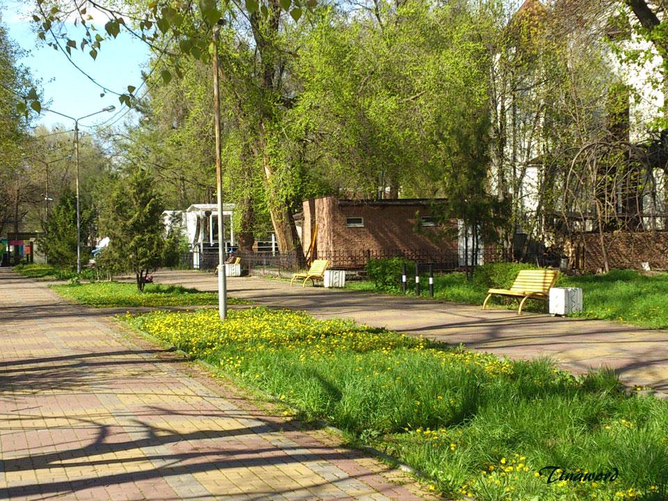 парк-3.jpg