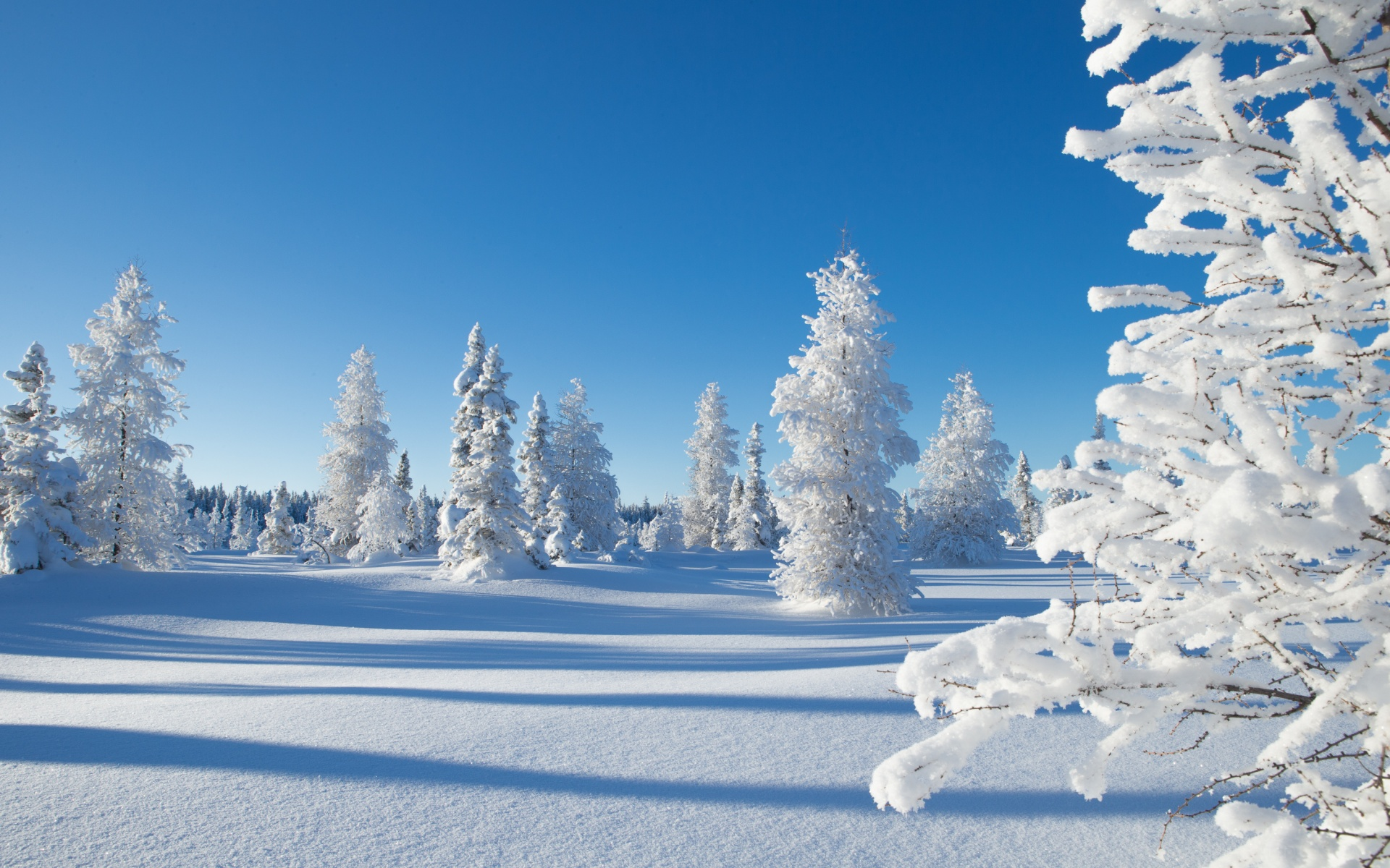 Зимние Обои Full Hd