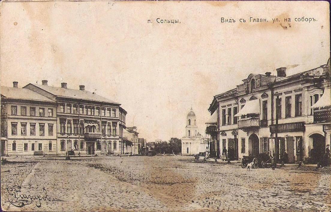 Вид с Большой Псковской улицы на собор
