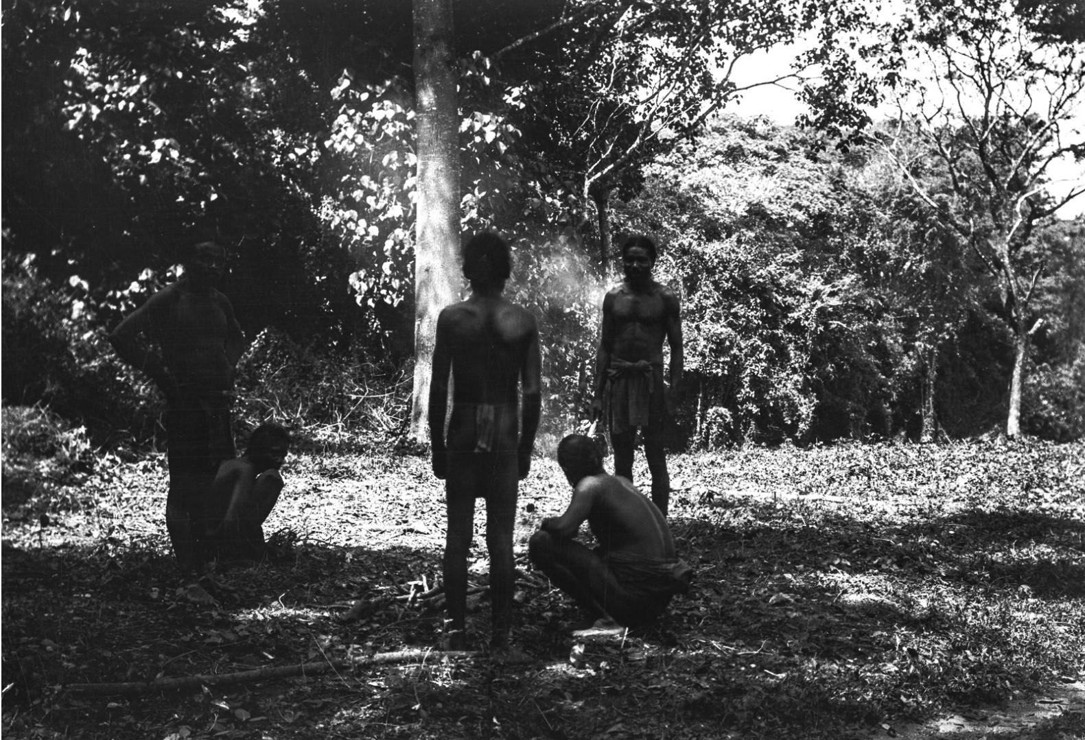 404. Ведды собрались у костра в лесу