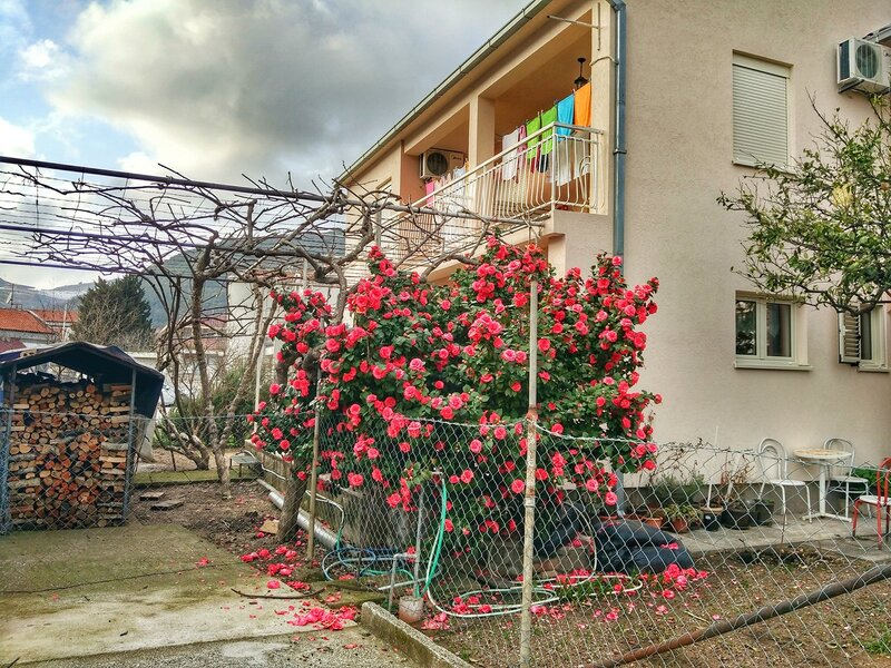 Весна в Черноогории