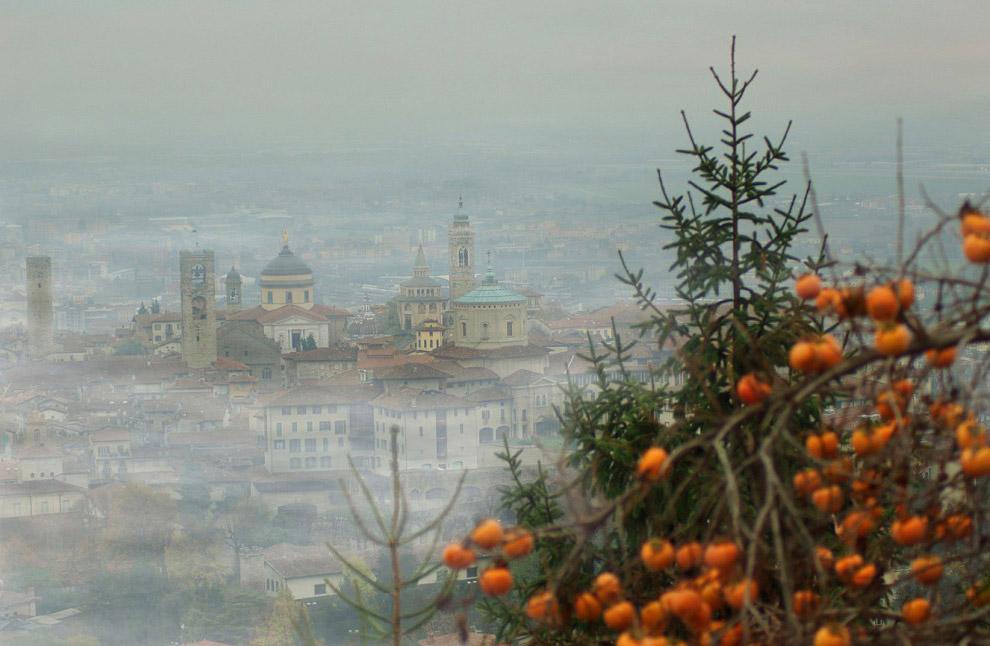 3. В ноябре природа тут пестрит насыщенными и яркими осенними красками, а деревья манят сорвать