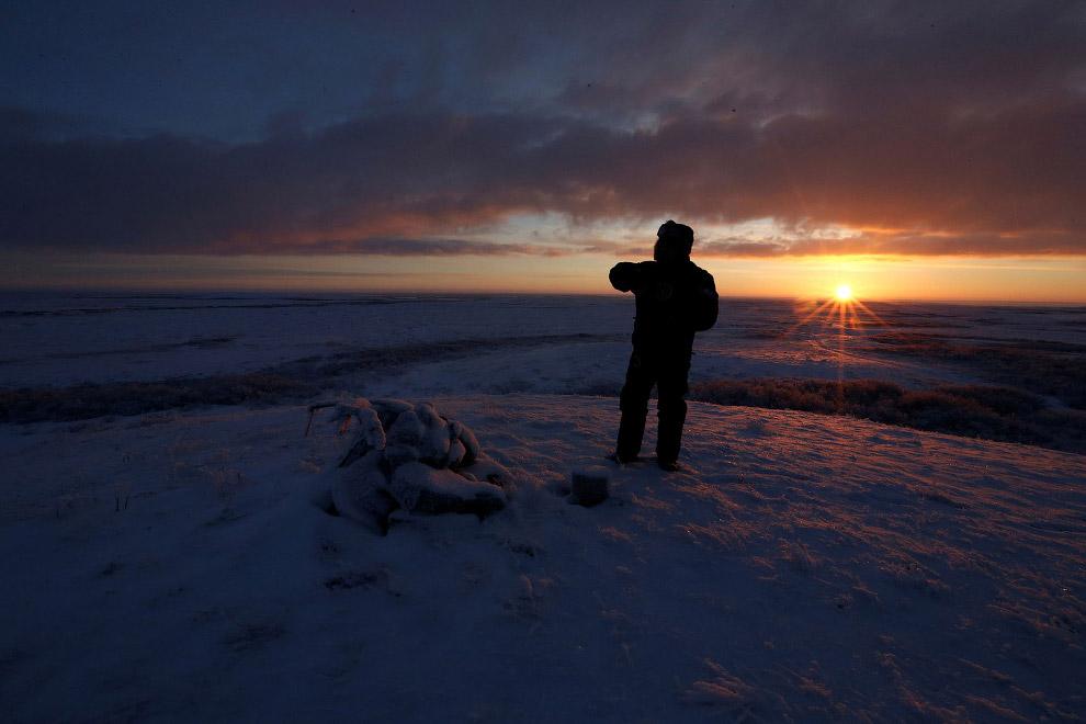 16. Северный олень — обитатель северных областей: тундры и тайги. Все характерные для него приз