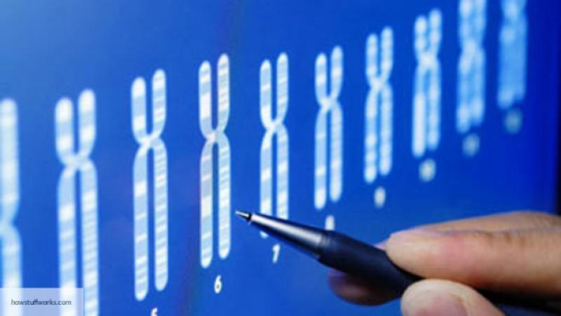 Длительность жизни женщин можно предсказать по«хвостам» ДНК