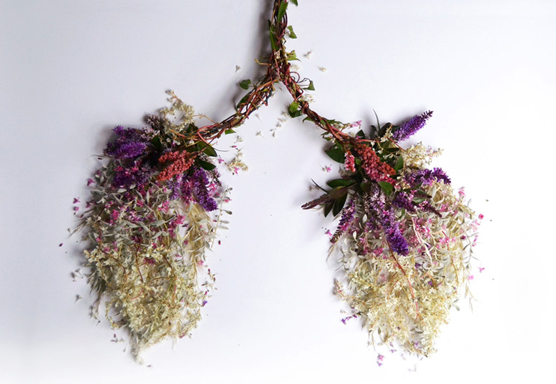 Eye Heart Spleen: Human Organs Made from Flowers and Plants by Camila Carlow (5 pics)