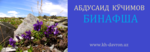 Ashampoo_Snap_2017.01.11_18h39m17s_005_.png