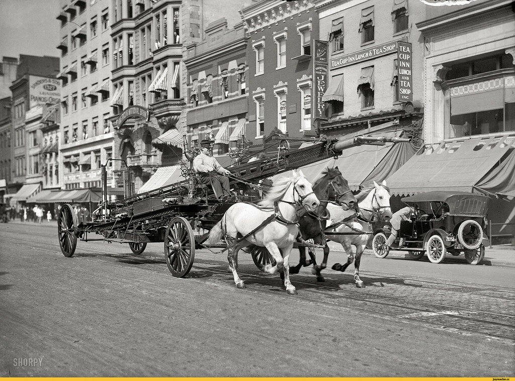 пожарные-тройка-Вашингтон-1914-1803784.jpg