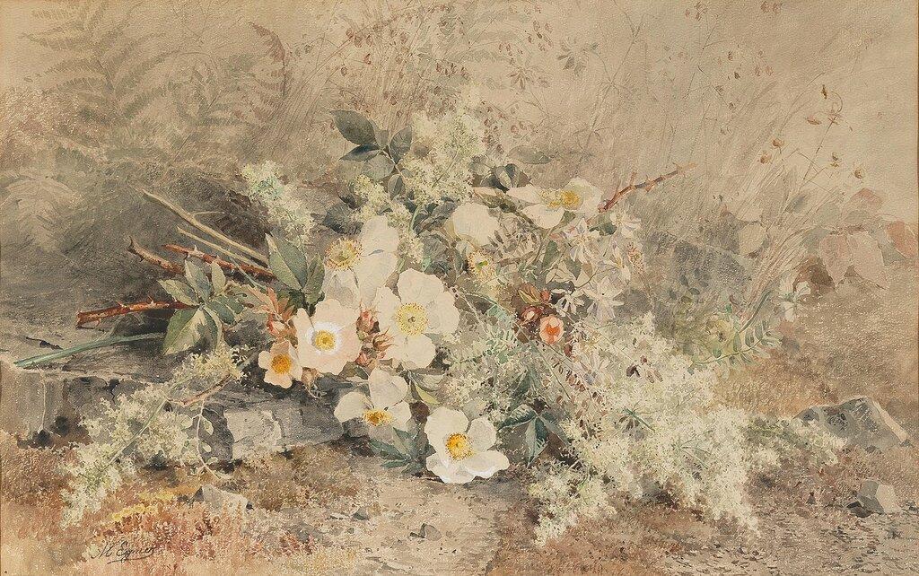 38N161205_138_60345_1.jpgMarie Egner (Radkersburg 1850-1940 Maria Anzbach)