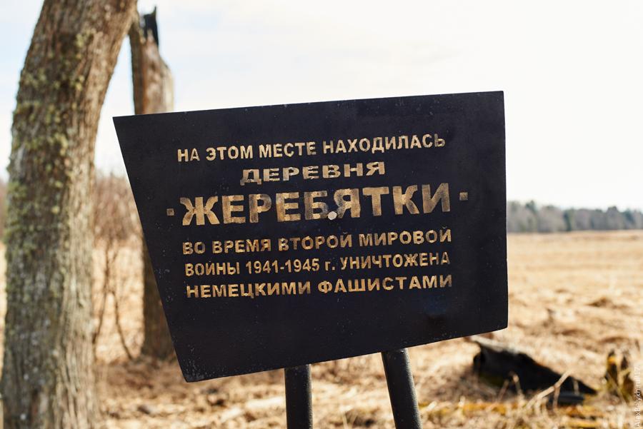 alexbelykh.ru, деревня Жеребятки, деревня Жеребяты