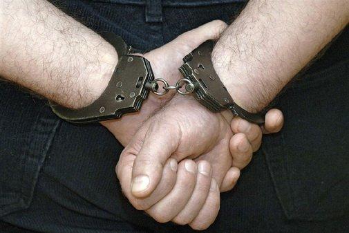 Житель Тюмени украл у друга планшет и 120 килограммов лосятины