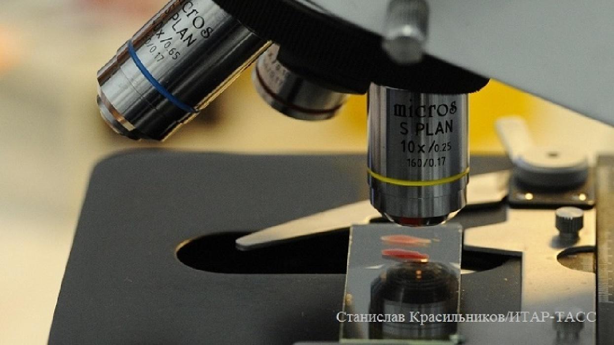 ВСША поставщиков гомеопатии вынудили предупреждать оненаучности ихпрепаратов
