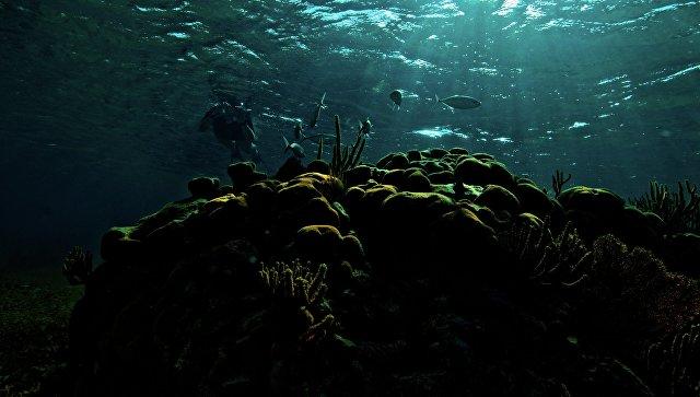 Китайский подводный робот побил рекорд при погружении вМарианскую впадину