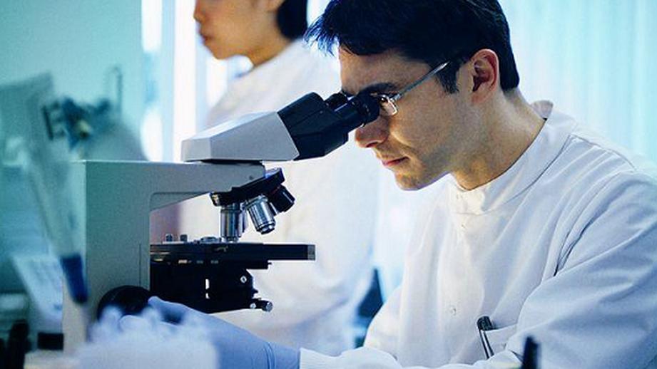 Новая разработка английских биоинженеров— мышечная ткань изшпината