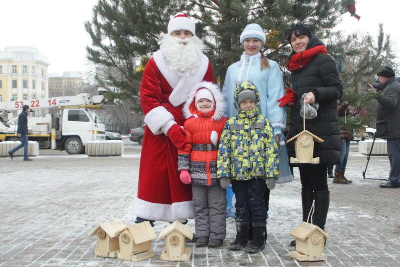 Покормите зимующих птиц, Саратов, 27 декабря 2016 года