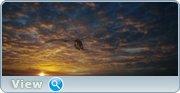 http//img-fotki.yandex.ru/get/198569/4074623.7a/0_1bd772_f4a47f0e_orig.jpg
