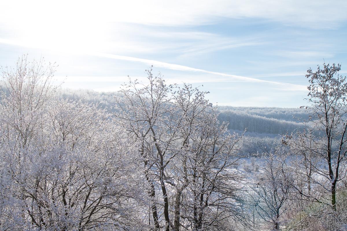 зима дорога фото 4
