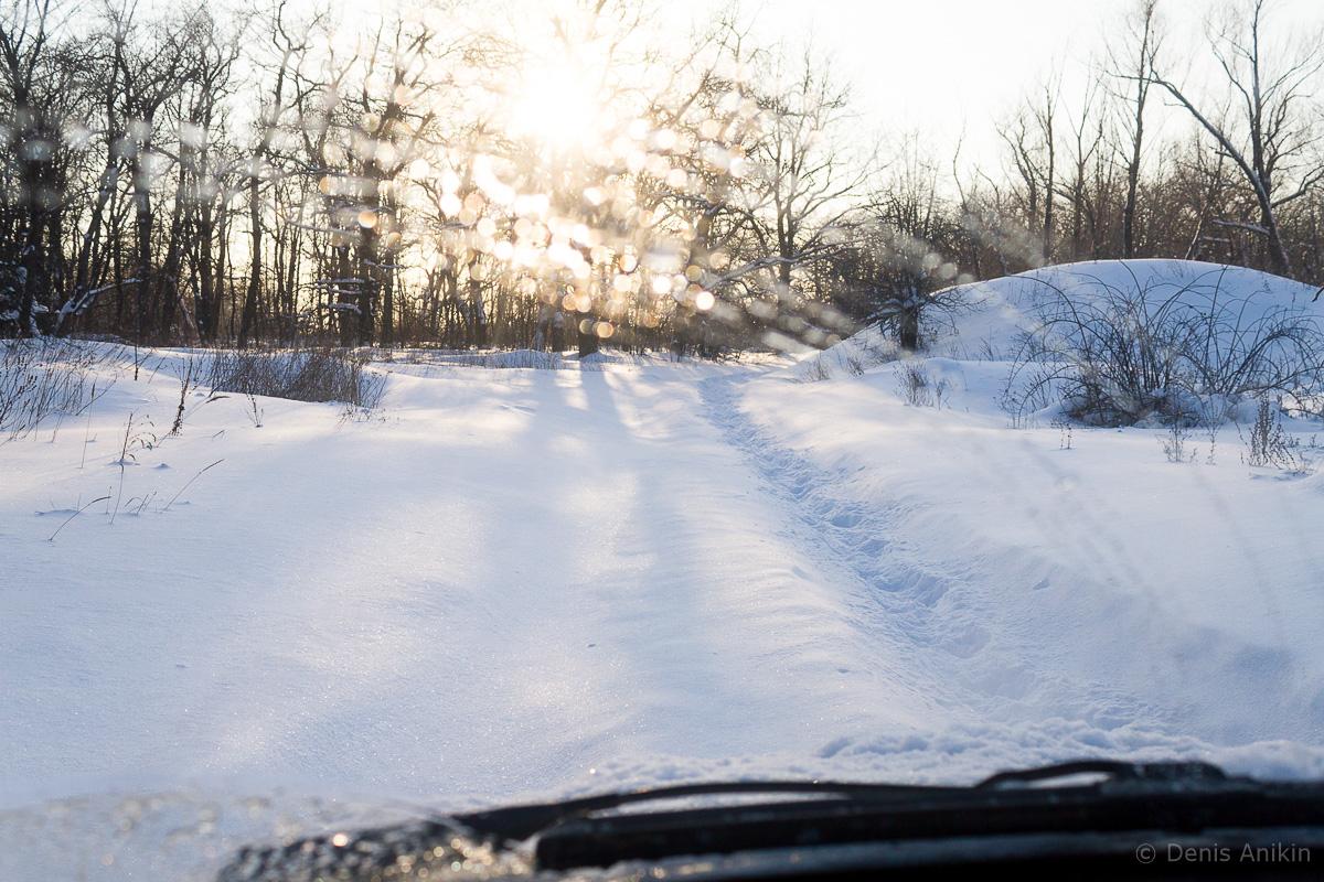 саратов лес кумысная поляна зима покатушка фото 5