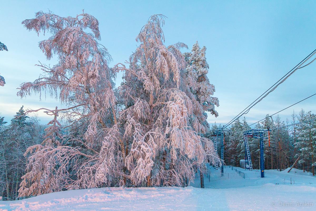 хвалынск зима горнолыжка фото 3