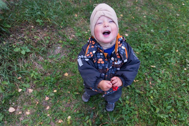 ребенок ест рябину