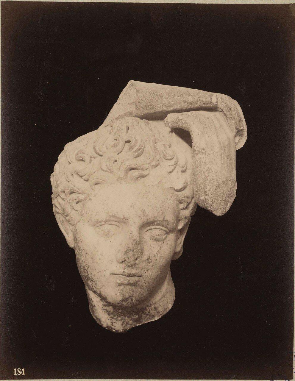 132. Мужская голова (фрагмент)