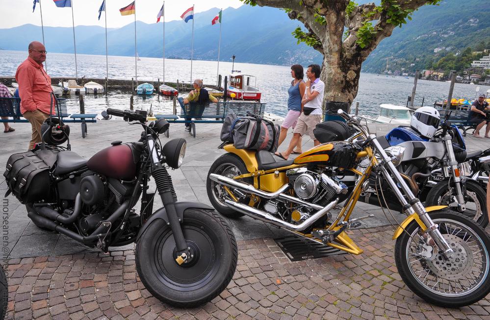 biker-(3).jpg